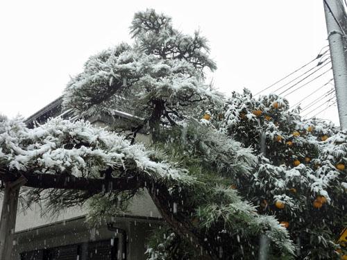 2012 02 29_0589-001.jpg