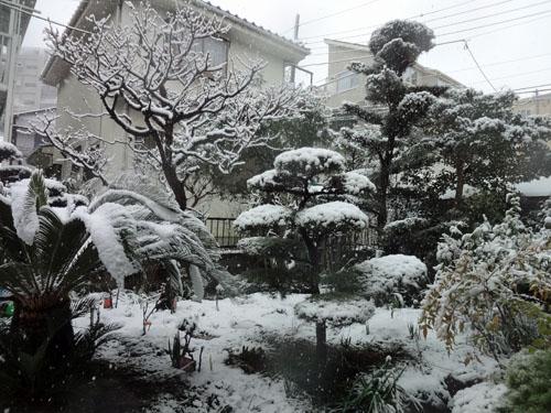 2012 02 29_0593-001.jpg