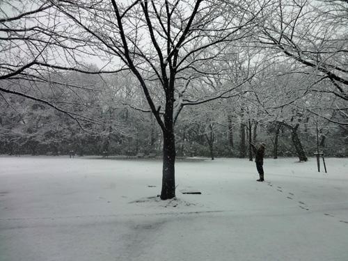 雪景色を撮るクゲユキ侯