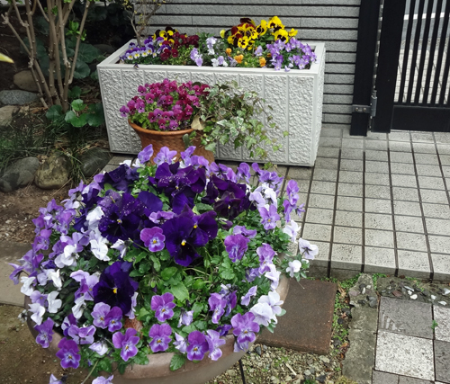 2012 03 23_0939-001.jpg
